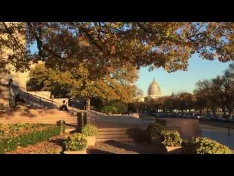 National Gallery of Art Fall 2015