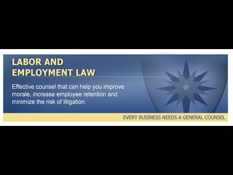Merritt Green Lawyer on At Will Employment 703-556-0411 General Counsel, PC