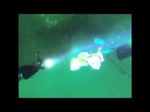 Anglerfish Torch Attack