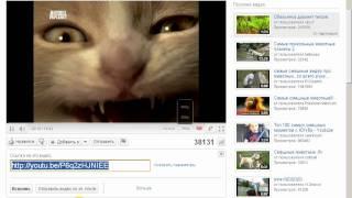 Как правильно вставить видеоролик из youtube себе на сайт