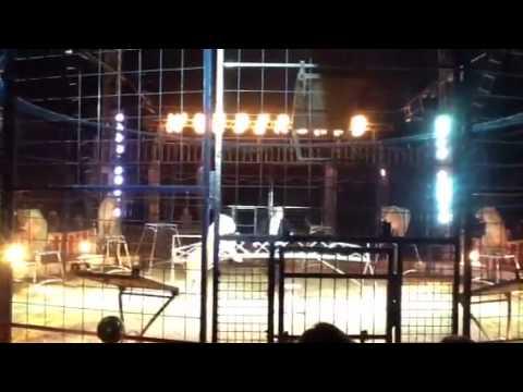 Jason Peter en el circo Wonderland