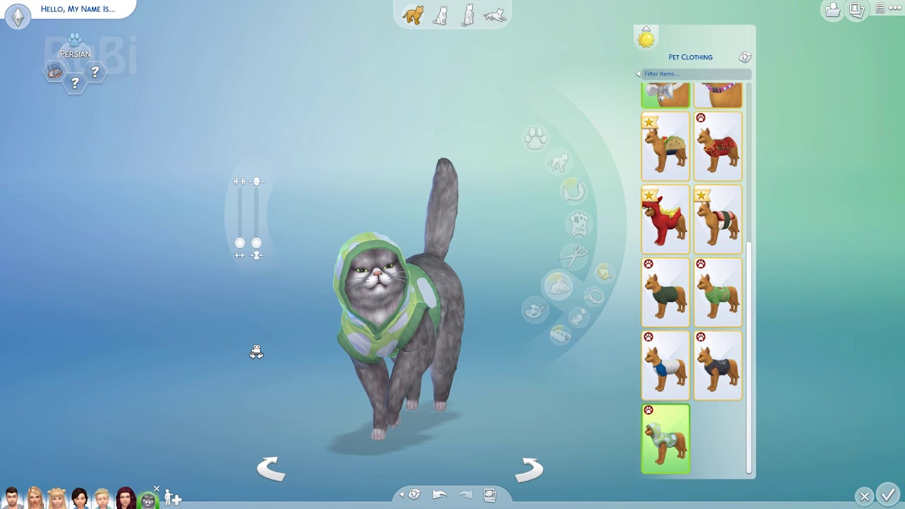 Cc Not Working Sims  Cats And Dogs