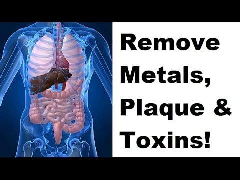 How To Remove Heavy Metals From Body