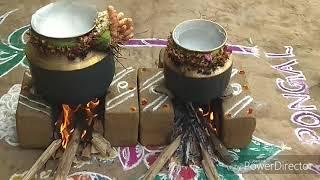 தமிழர் திருநாள் எங்கள் வீட்டு தை பொங்கள் கொண்டாட்டம் ||Pongal celebration in village with my Family