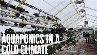 Aquaponics in a C๐ld Climate