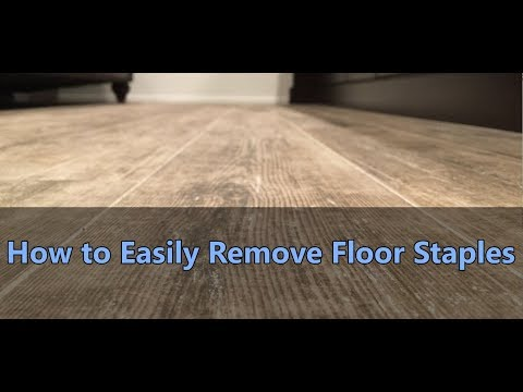 How To Easily Remove Floor Staples Youtube