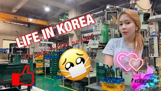 Life in Korea + COVID-19