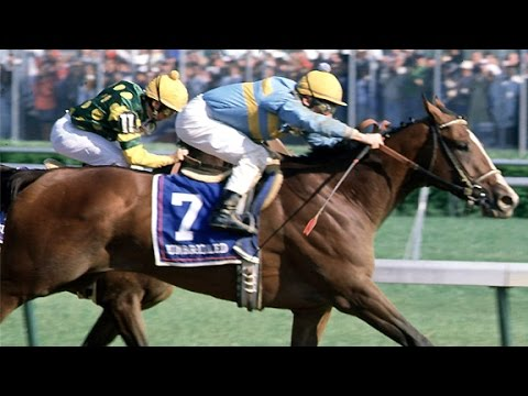 8X10 PICTURE OF 1990 KY. DERBY WINNER UNBRIDLED OFFICIAL