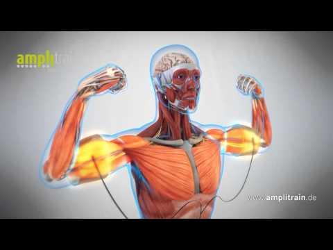AmpliTrain EMS Training 3.0 English