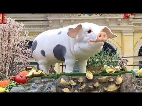 Las Vegas: Year Of The Pig @Bellagio's Arcadia