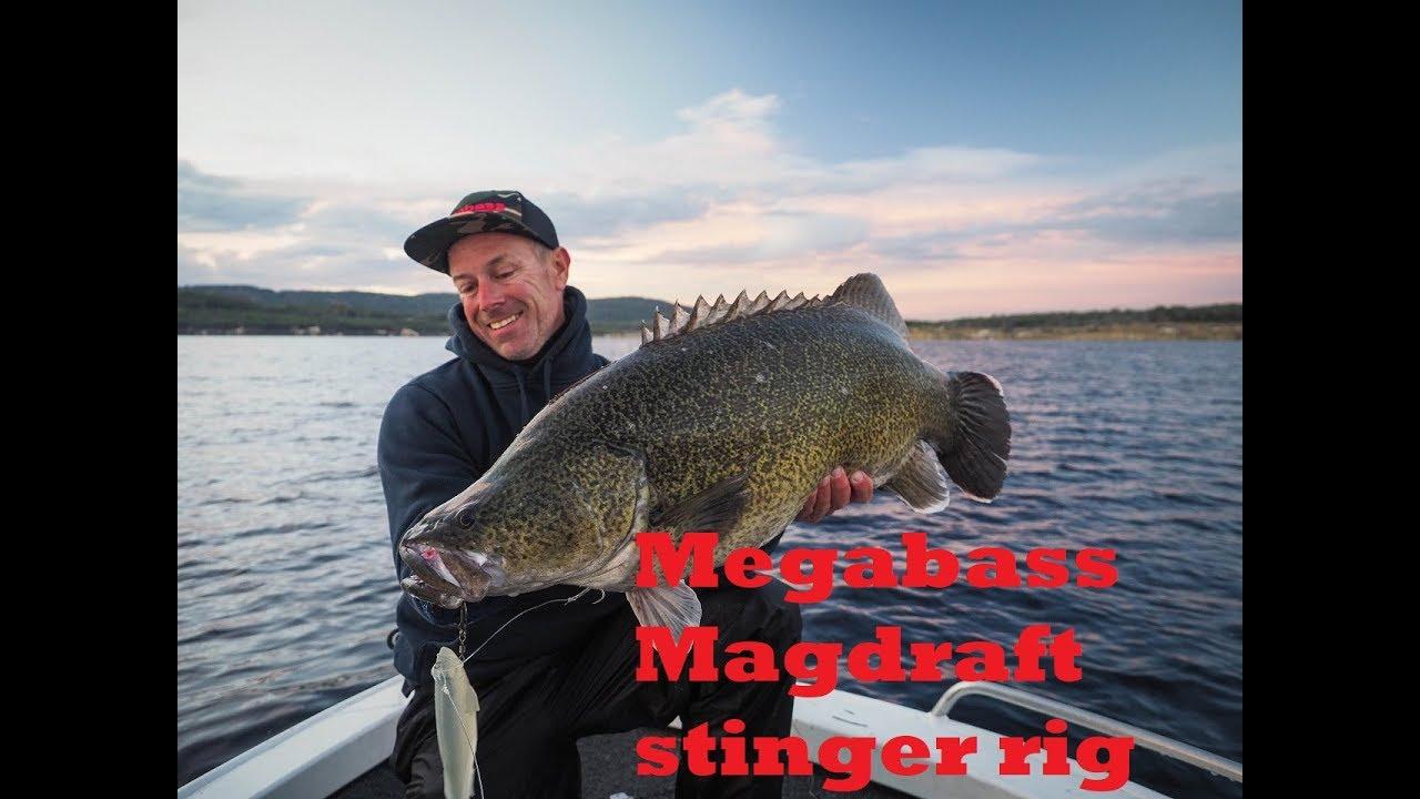 Rigging a Megabass Magdraft with a stinger hook