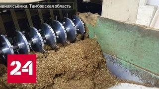 В Тамбовской области закрыли подпольный цех по производству сигарет