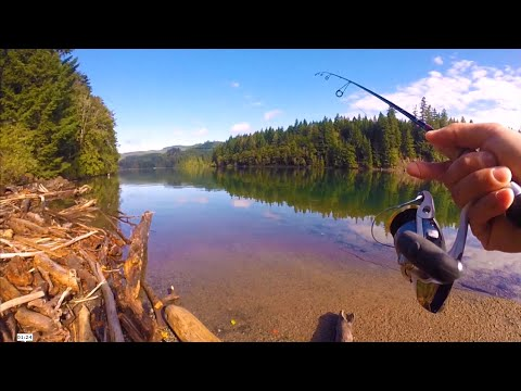 Powerbait setup for trout doovi for Fishing with powerbait
