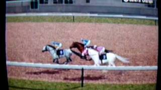 Gallop Racer 2006