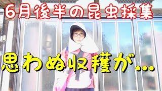 【他ライブ予定】 7月15日(日)【仙台】 インストアライブ 場所:錦ケ...
