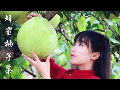honey and grapefruit tea | 寒意渐浓的深秋,来碗暖人心脾的蜂蜜柚子茶可好 | 丨Liziqi Channel