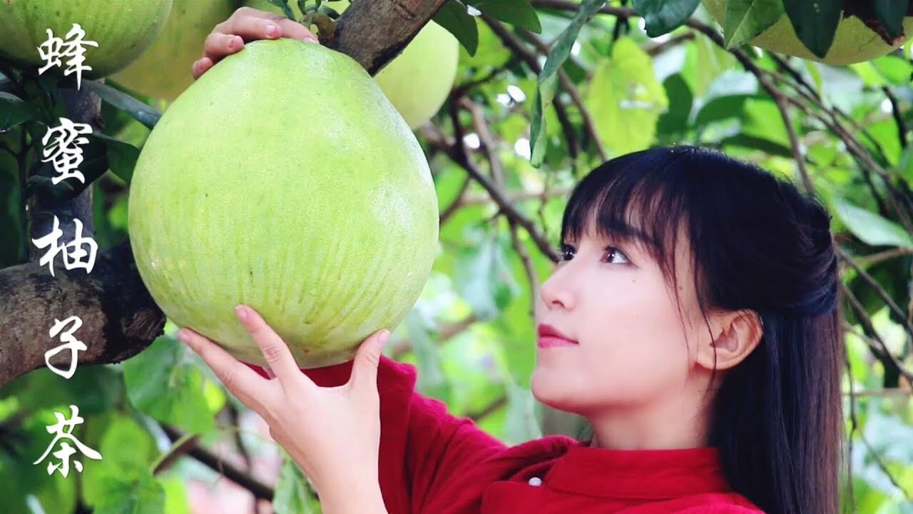 honey and grapefruit tea   寒意渐浓的深秋,来碗暖人心脾的蜂蜜柚子茶可好   丨Liziqi Channel