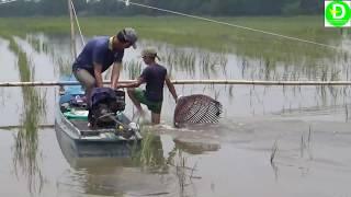 Đẩy côn mùa nước nổi ở miền tây l Fishing VIETNAM