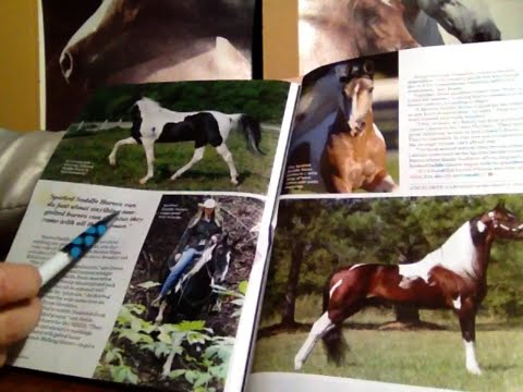30 Minutes Flipping Thru Horse Illustrated Magazine, Soft Spoken Comments, Gum Chewing, ASMR,