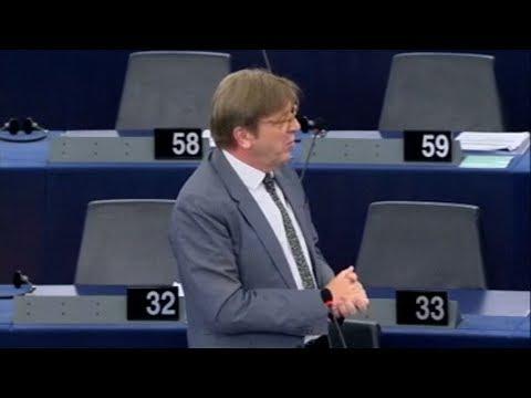 Guy Verhofstadt 14 Jun 2017 plenary speech on European Council of 22 23 June 2017