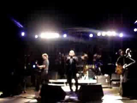 Giuliano Palma & The BlueBeaters - Testarda io (live)