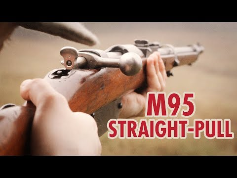 Backyard Battlefield 1: Mannlicher M95 Scout class World War 1 rifle