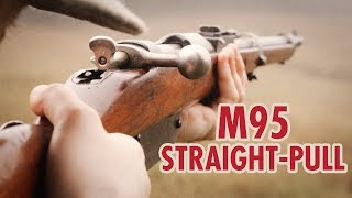 Austrian Mannlicher M95 World War 1 rifle vs. Battlefield 1