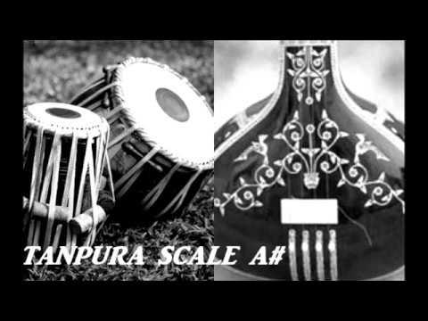 TANPURA SCALE A#