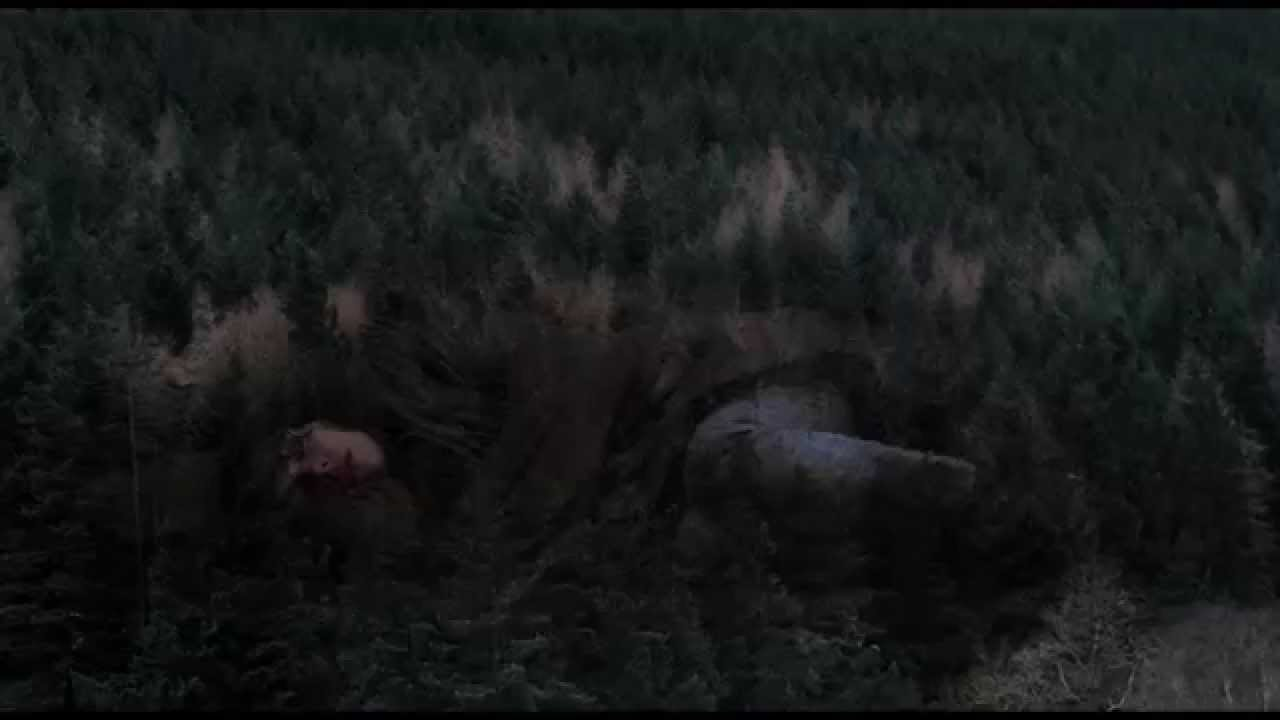 UNDER THE SKIN - Bande-annonce