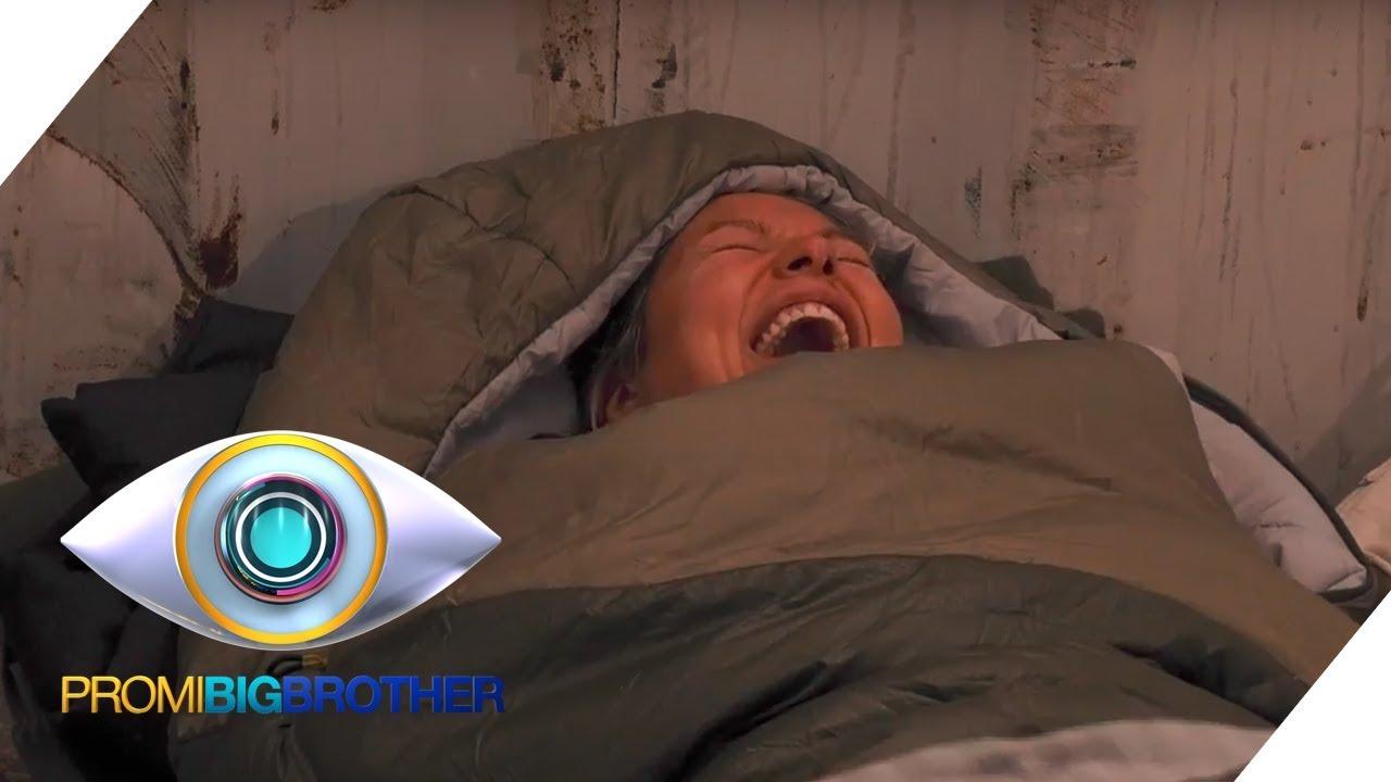Sat 1 Big Brother