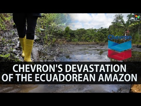 Chevron's Devastation of the Ecuadorean Amazon