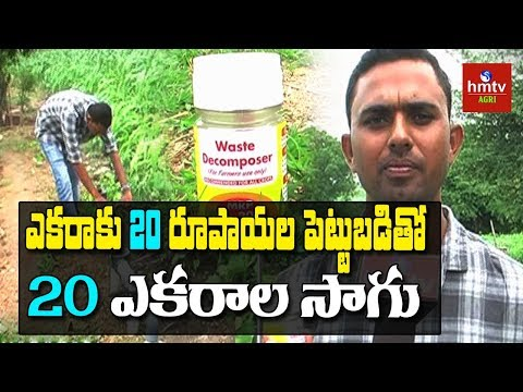 Waste Decomposer | Young Farmer Ravindar Success Story In Natural Farming | hmtv agri