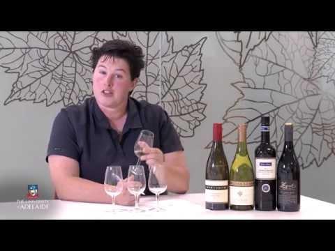 World Of Wine: Wine Tasting Summary