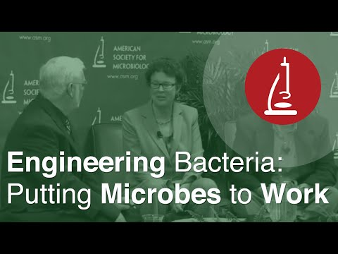 Putting Microbes to Work