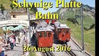 Schynige Platte Bahn August 2016