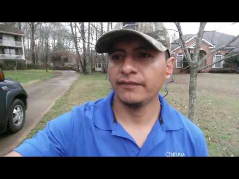 Property Clean up/Tree Job/Husqvarna T540XP