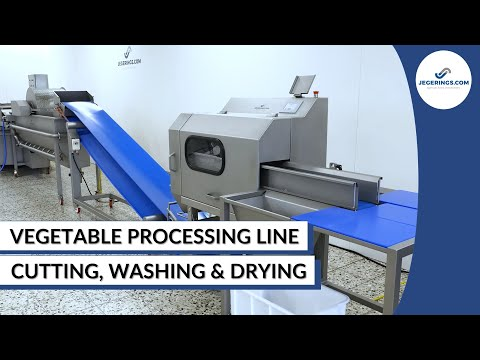 Vegetable Processing Line For Small To Medium-Sized Companies