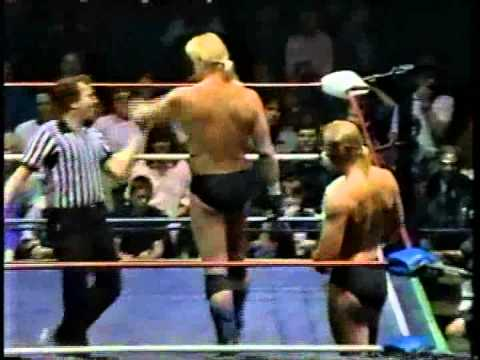 WW 2/4/89- Reed Inv- Windhams vs Mike Collins & Mike Jackson