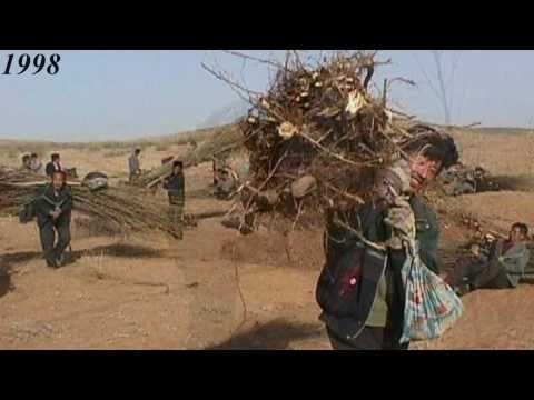 Inner Mongolia Greening Desert Project