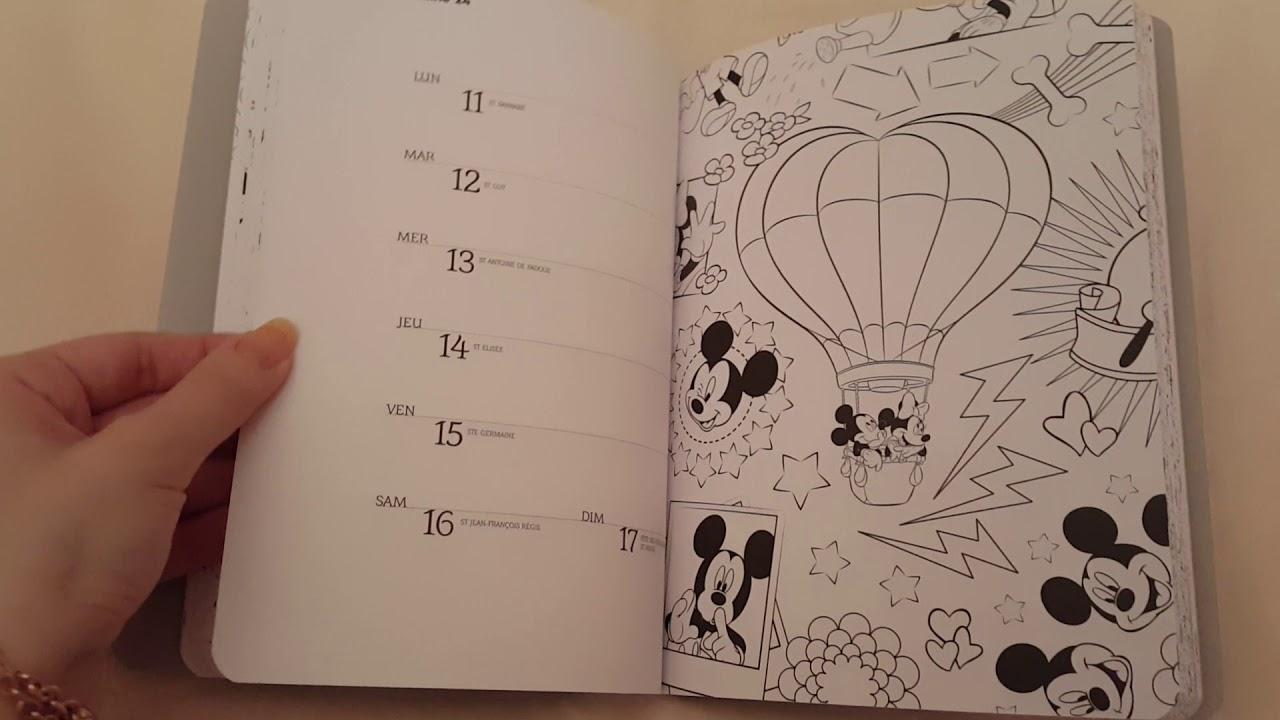 Art-Thérapie: Agenda Disney 15