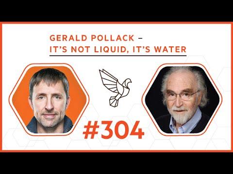 Gerald Pollack - It's Not Liquid, It's Water: #304