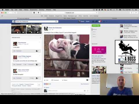 Basic Walkthrough of the Facebook Platform - LIKE A Boss Facebook Training