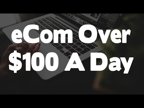 How To Make $100 Per Day With Shopify (Explained For Beginners)