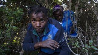 Centenares de inmigrantes de África saltan la valla del enclave español de Ceuta