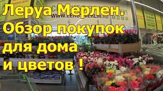 Обзор покупок в ЛЕРУА МЕРЛЕН . Цветы , Субстраты и еще кое что для дома .