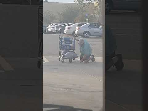 Man Fights With Walmart Shopping Cart