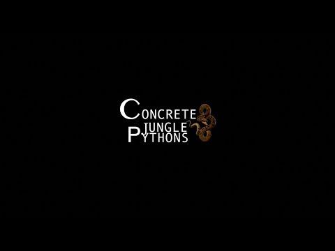 LIVE FEED ALERT - Ball Python's & Concrete Jungle Python's (First VLOG)