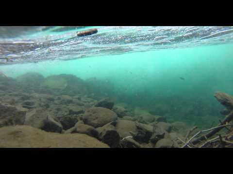 inside Clackamas River, 4k