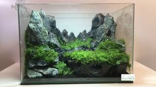 Aquascaping réalisation - Laurent Garcia - Aquarilis