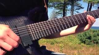 """""""APEX"""" Guitar Play-Through video by """"The Lone Tree in the Woods that Killed Us All"""" (Instrumental)"""